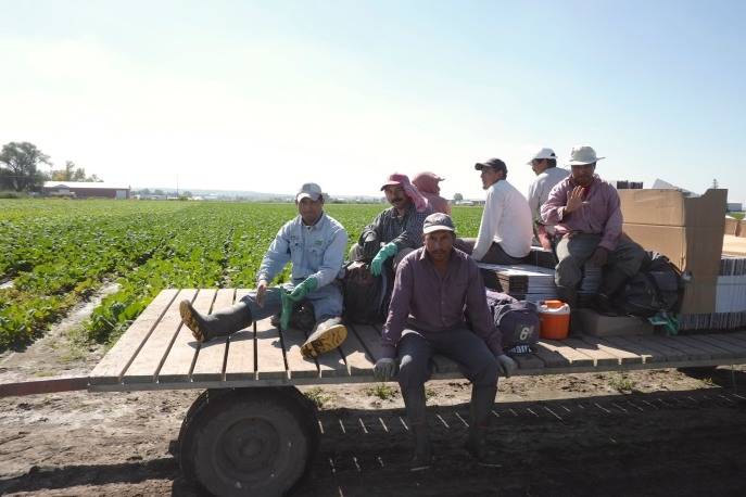 Our heroes, the guys that pick the food we cook!